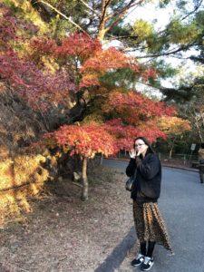 鳳来の紅葉