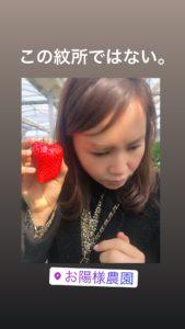 葵の御紋の入った印籠なみに大きなイチゴです!
